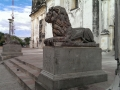 Lions guarding the cathedral - Leon