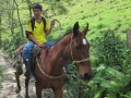 Local on horseback - Valle de La Cocora